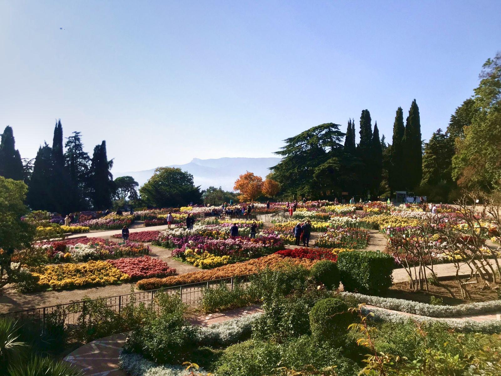 Крым. Никитский ботанический сад в Ялте